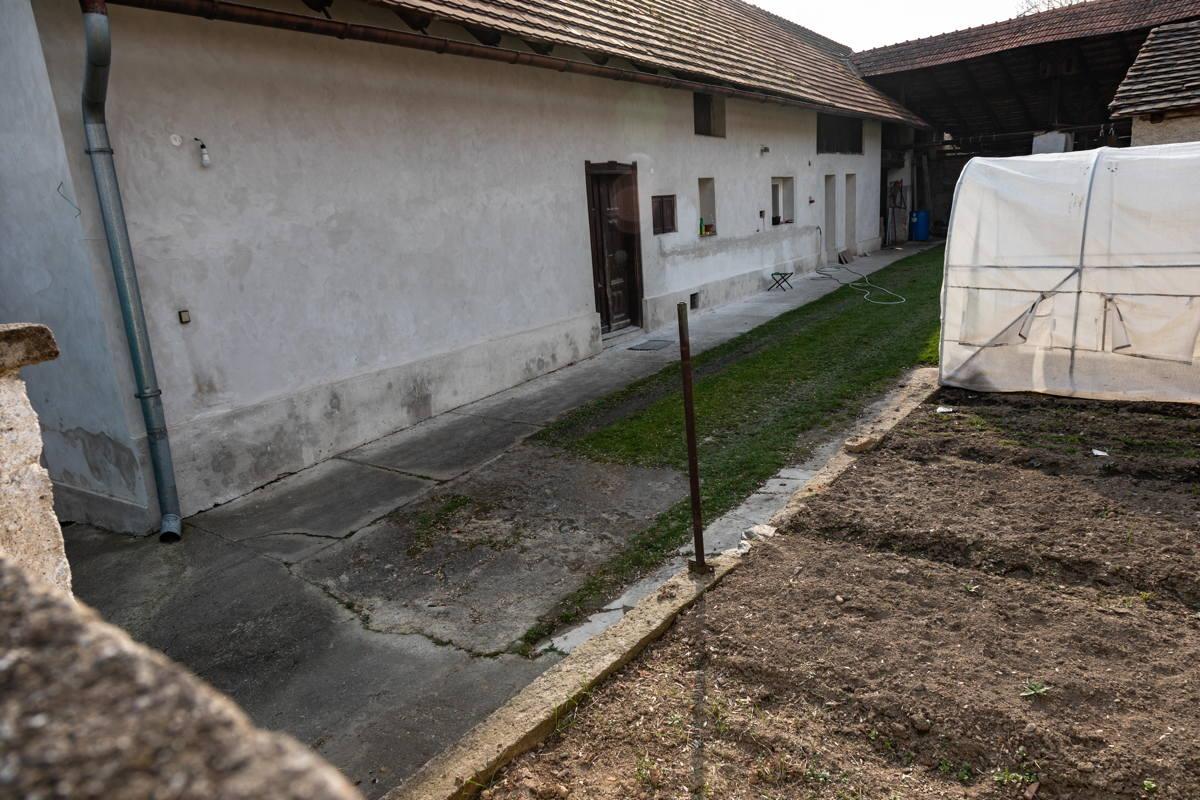 garden behind houses